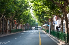 I frequently walked this street in the French Concession.