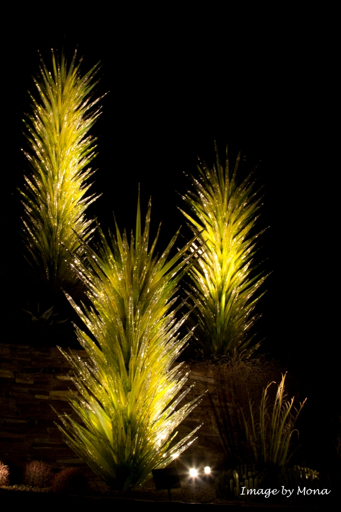 Several years ago, the Gardens hosted an exhibit by Dale Chihuly. Three glass cacti remain to greet visitors.