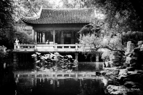 Tea House in Old Shanghai