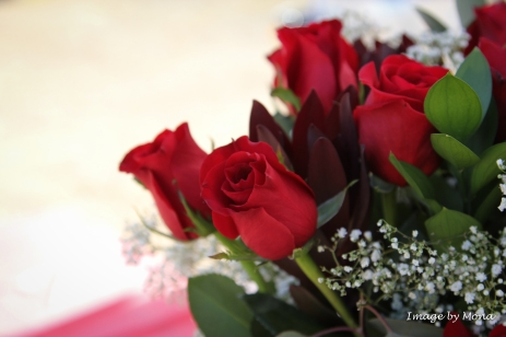 Hope is giving and receiving a vase of red roses.